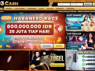 303Cash Agen Poker